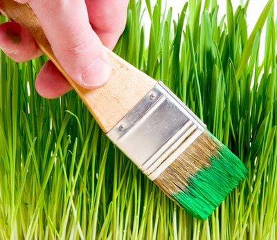 http://enviralment.files.wordpress.com/2009/11/greenwashing.jpg
